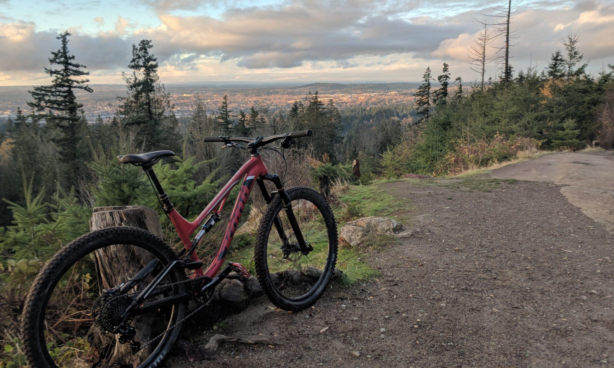 Mountain Bike in Bellingham WA